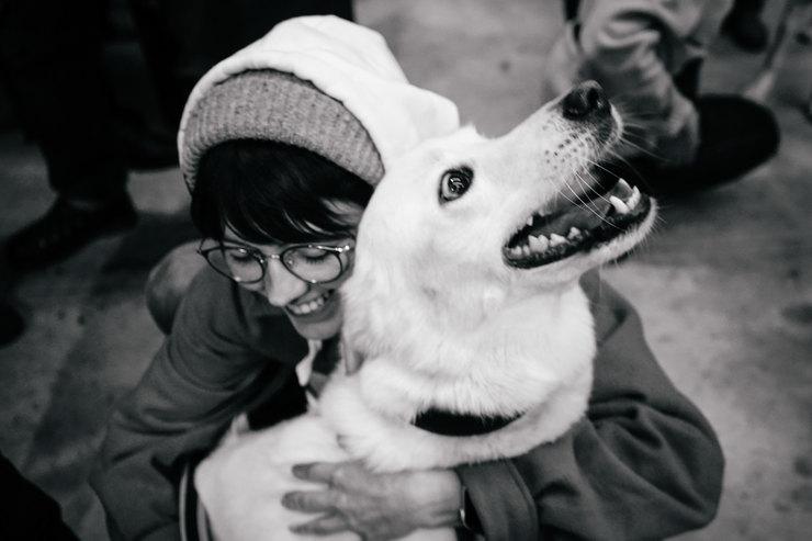 Благотворительный маркет отпроекта «Привет, животные»