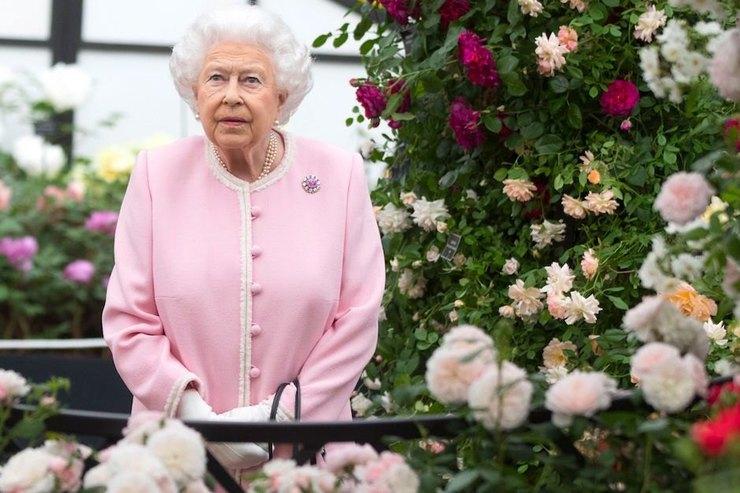 Елизавета II уверена — Меган Маркл несправится собязанностями герцогини
