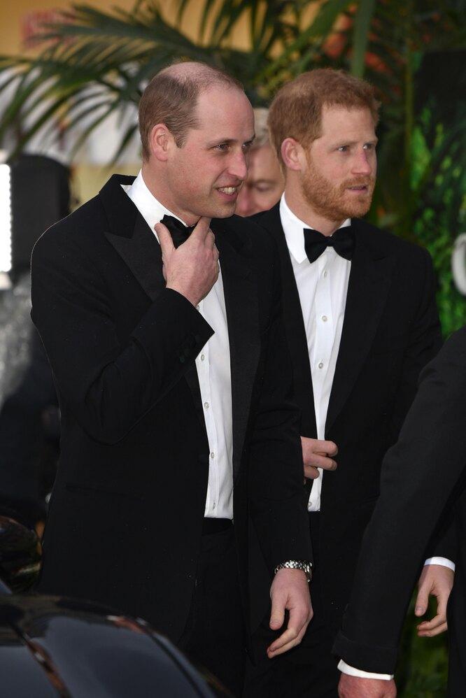 Принц Уильям с братом