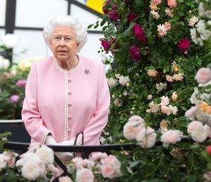 Елизавета II уверена — Меган Маркл не справится с обязанностями герцогини