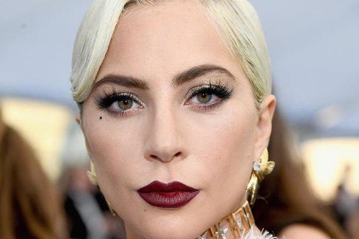 Леди Гага дерзко запрыгнула нафаната ирухнула сним назрителей: видео конфуза