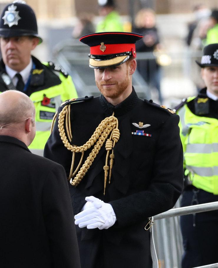 Принц Гарри думает орасширении семьи