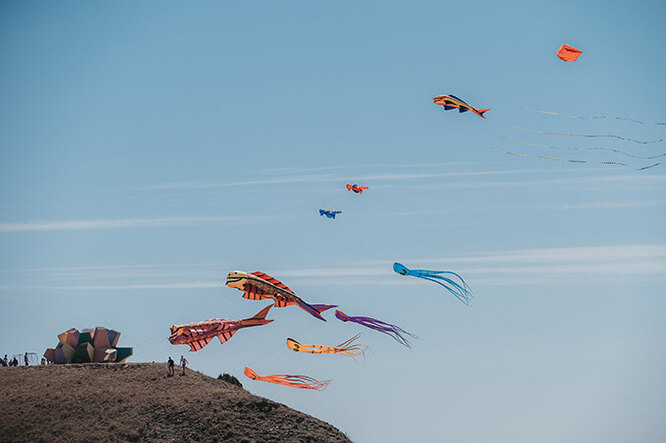 Шоу воздушных змеев
