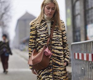 Модное сафари: блоггеры показывают, как приручить зебру