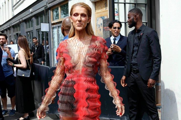 Селин Дион впрозрачном платье впол безбра прогулялась поПарижу