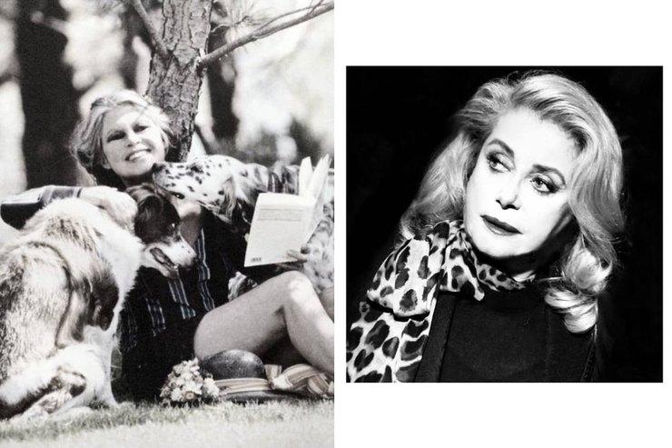 Денев иБардо: актрисы, которые обманули старость безупречным стилем