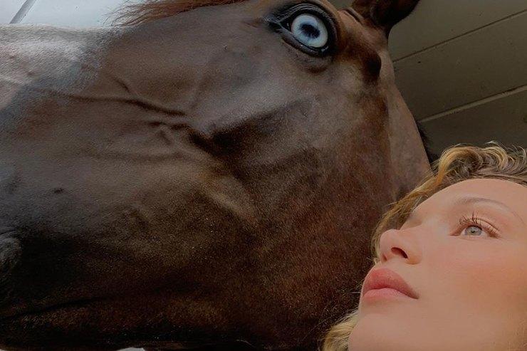 Белла Хадид наколенях позировала сголубоглазой лошадью